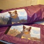 Australian Cattle Dog tracking bag